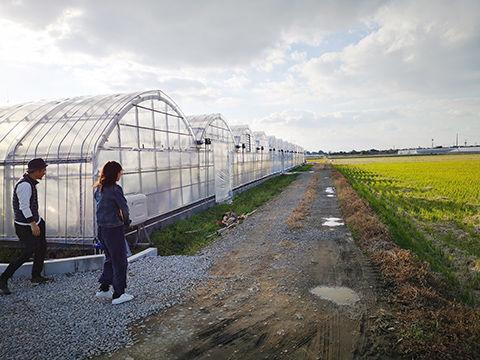 農地まわりD480.jpg