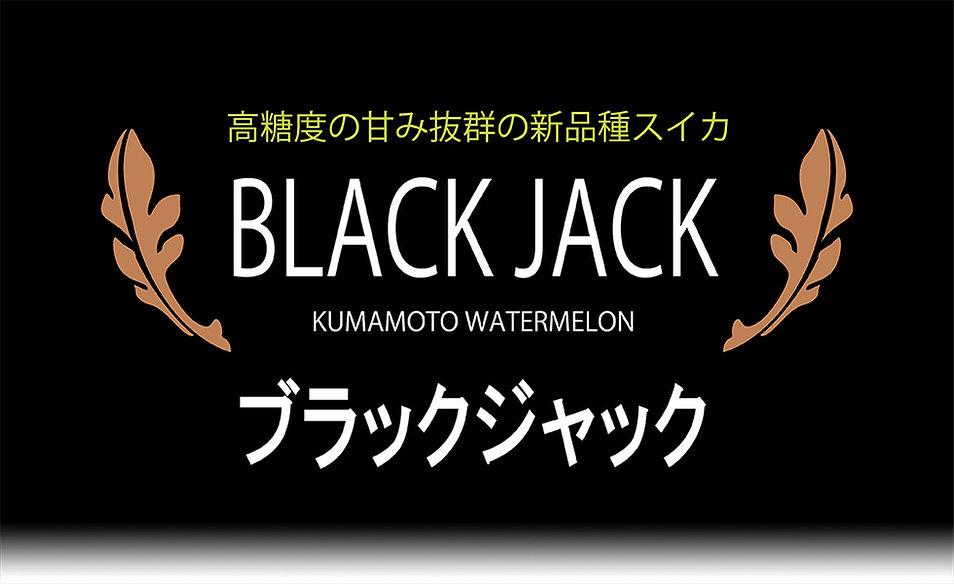 ブラックジャックパネル980×600.jpg