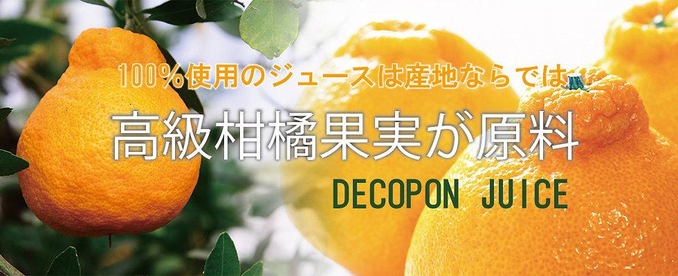 デコポン980×400イメージ.jpg