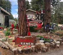 Rambler_Ranch_Garden_Met.png