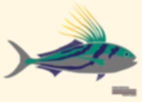 Roosterfish (1).jpg