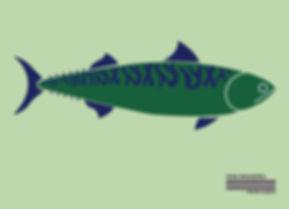 King Mackerel.jpg