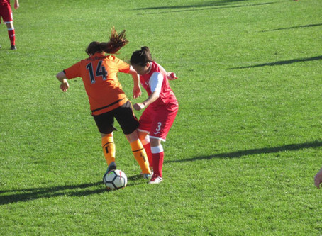 Frome Town Ladies 7-0 Wellington Town