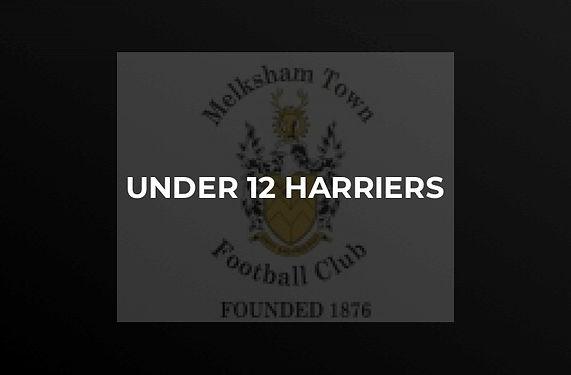 U12 Harriers