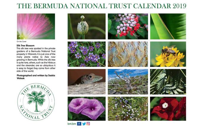 Bermuda National Trust Calendar, 2019