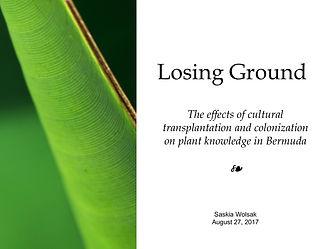 Losing Ground10.jpg