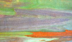 eucalyptus landscape