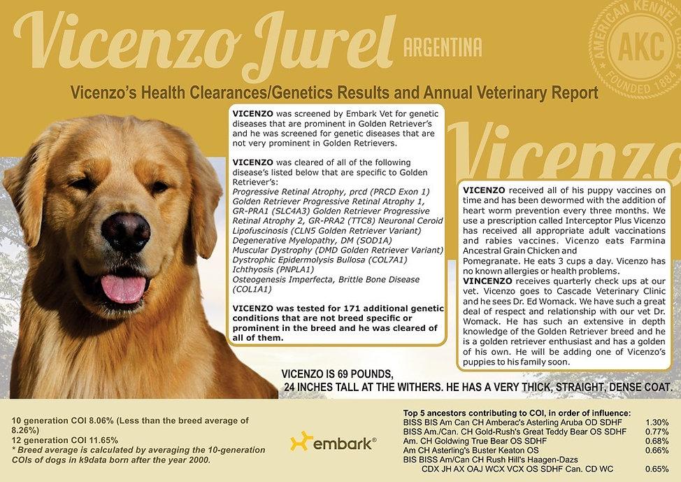 Vicenzo-Health-Record4_edited_edited.jpg