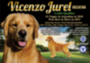 Vicenzo-Jurel3.png