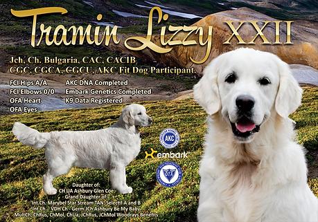 Tramin-Lizzy-XXII.png