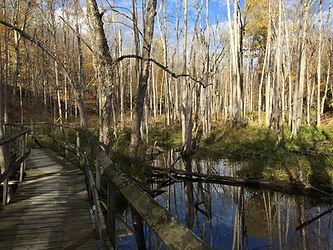 Frontenac-trail.jpg