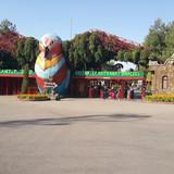 Hayvanat Bahçesi: Gaziantep - Dev Bir Platoda Yaşam Döngüsü