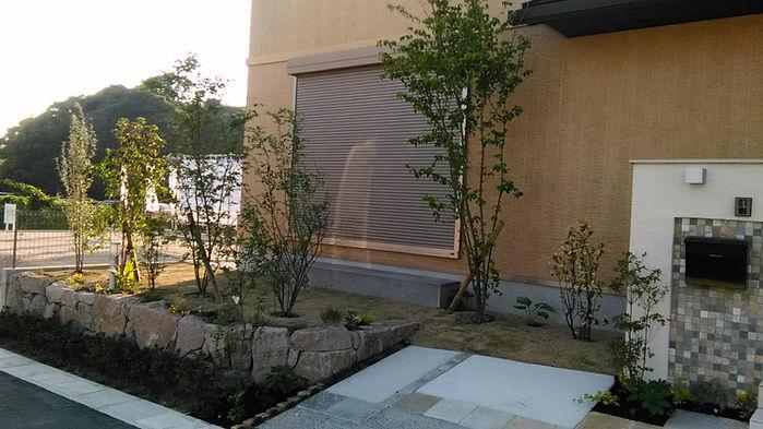 植樹された新築の家