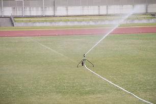 芝生 散水