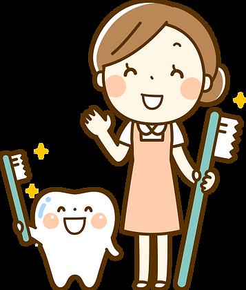 虫歯予防のイラスト