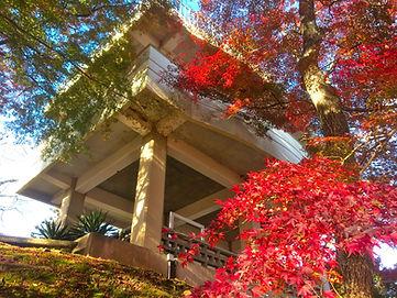 秋の尾関山公園