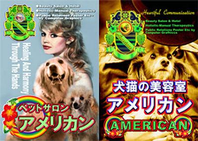 犬猫の美容室アメリカン