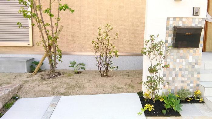 植樹された庭木