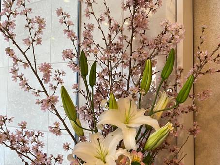 エントランスのお花が新しくなりました。