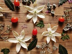 バイオセラピー花