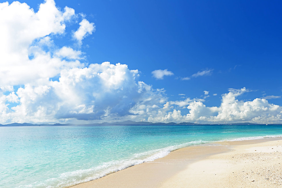 美しい海岸線