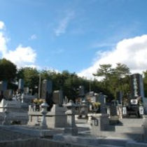 お墓の保険