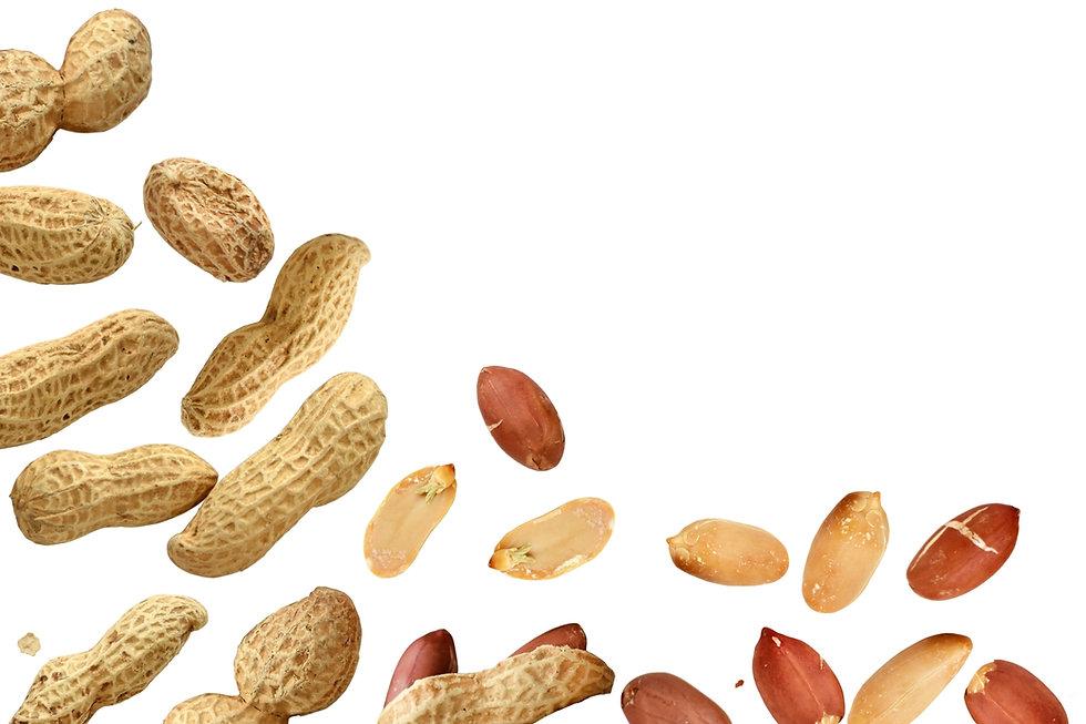 ピーナッツ背景