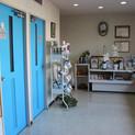 熊本動物病院の待合室