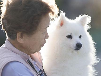 人と犬.jpg