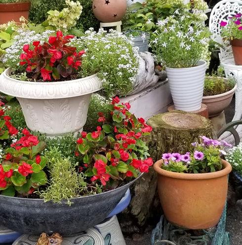花壇加工後