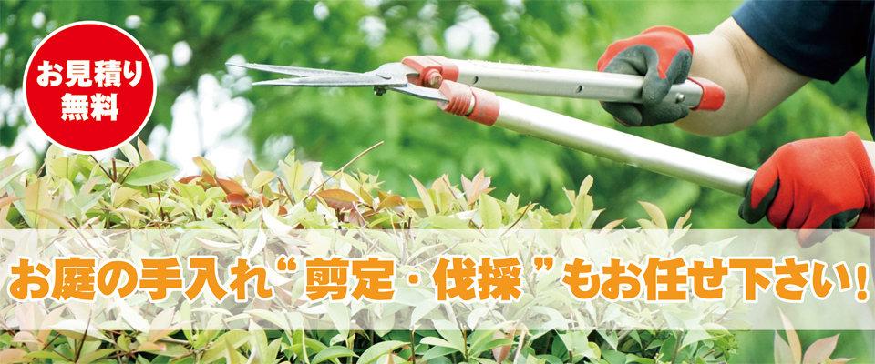 お庭の手入れ剪定・伐採もお任せ下さい