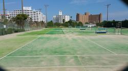 テニスコート芝生