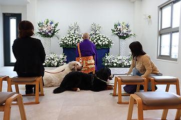 ペット葬儀