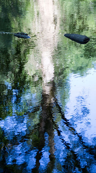 Armelle, photographe - Stéphane Guilbert xenox, canal de Lady Nada et Shinaar