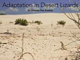 lizard_adaptation_gr4_pres_cover.jpg