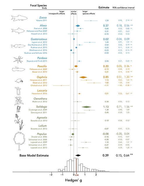 Figure2_ForestPlot_REModel_DesRoches2017