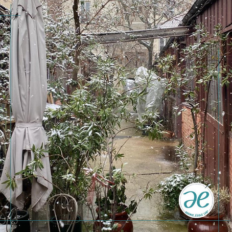 La belle cour de l'école sous la neige tombante