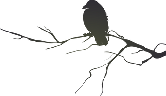 raven-clipart-branch-silhouette.png