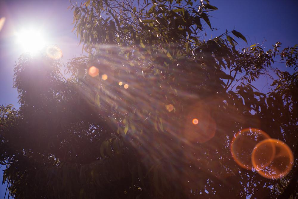 Lens Flair from the Sun