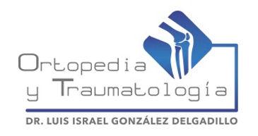 israel nuevo logo.ai.jpg