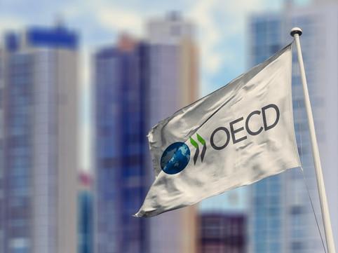 Segundo a OCDE o Brasil é a única grande economia em desaceleração