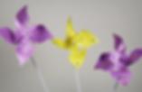 Screen Shot 2019-04-11 at 14.31.24.png
