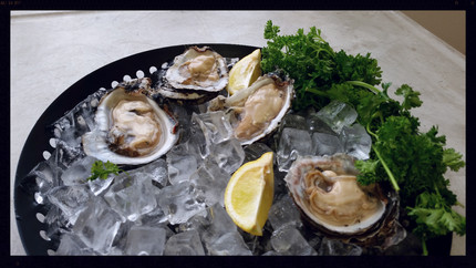 Vibrio bacteria in raw oysters: managing risks to human health