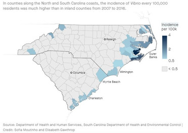 A flesh-eating bacteria lurking in the ocean is killing people in the Carolinas