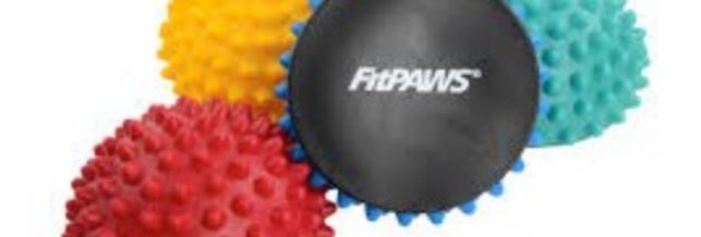 FitPaws Paw Pods 4pk