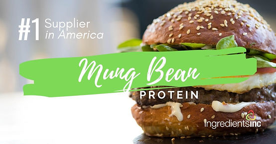 Mung Bean Protein from Ingredients Inc