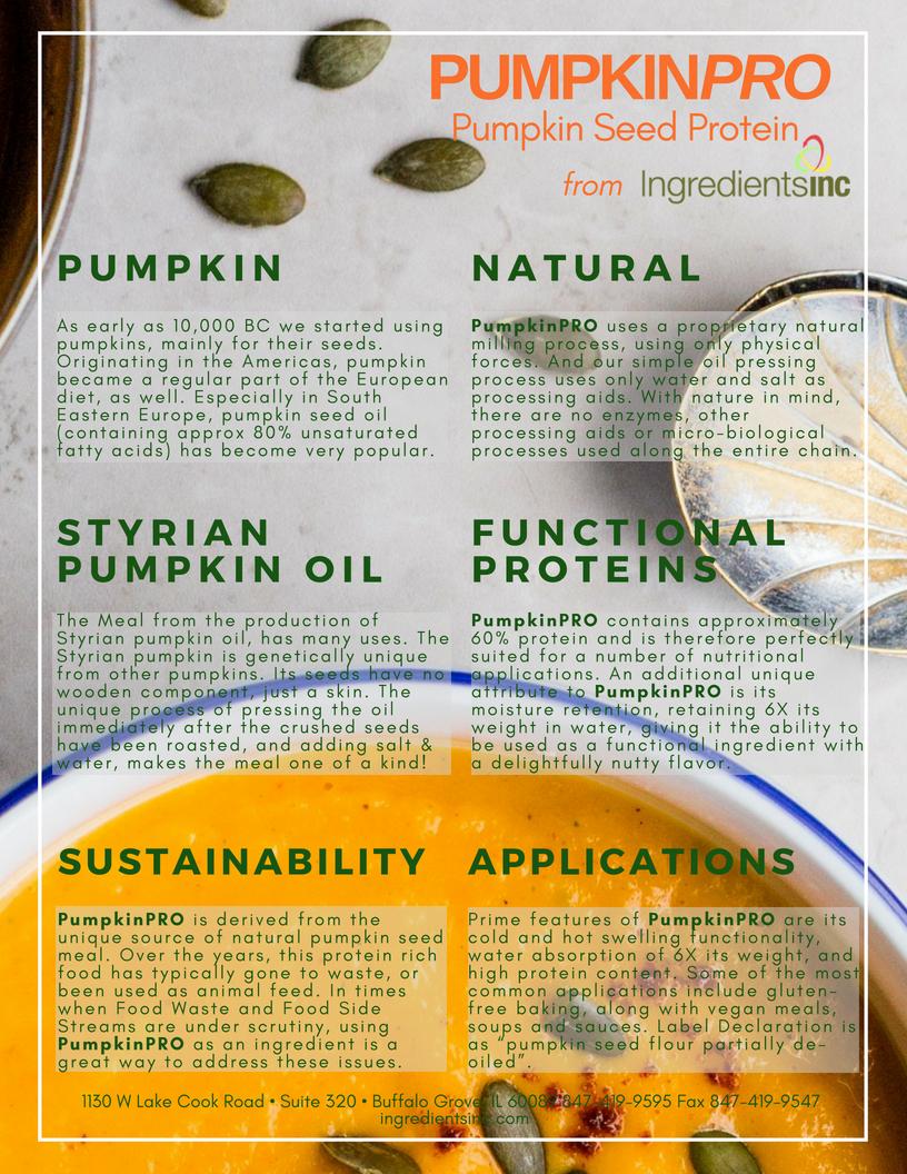 Pumpkin Protein Soup