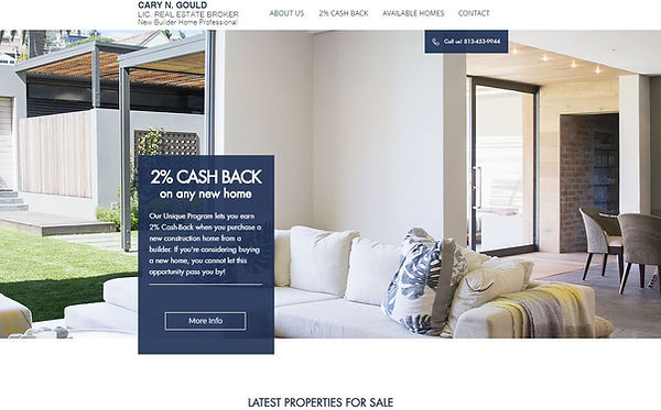 disocuntnewhome.com homepage.JPG