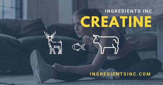 Creatine Ingredients Inc.png