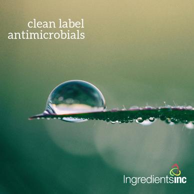 ingredients inc antimicrobials